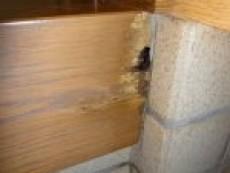 白蟻に食われた玄関框