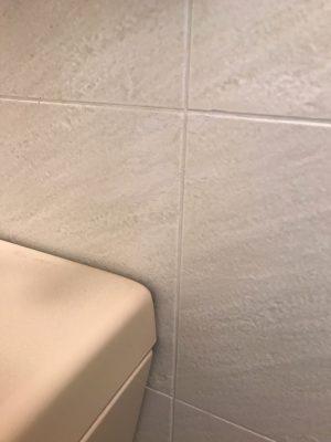 風呂場壁面補修